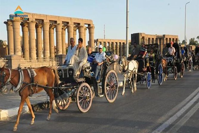 Luxor City Tour By Horse Carriage From West Bank photo 6