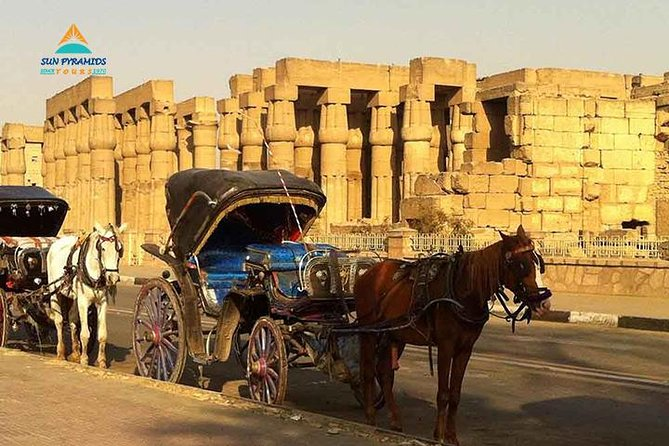 Luxor City Tour By Horse Carriage From West Bank photo 1