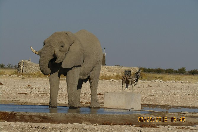 4 Days Exciting Safari in Livingstone, Zambia (camping)