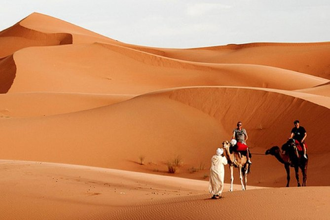 2 Days trip in a small group from FEZ to FEZ passing by MERZOUGA