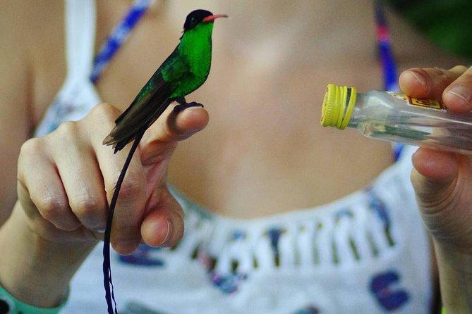 Flora and Fauna- Bird Sanctuary & Plantation Tour