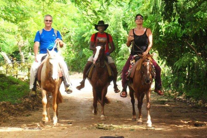 Salto el Limón Waterfalls & Cayo Levantado Tour
