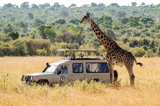 5 Days Tanzania Private Luxury Safari Tours photo 6