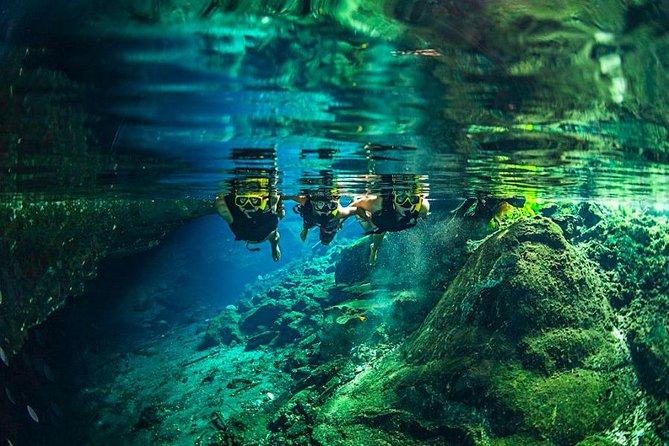 Jungle Maya Native Park