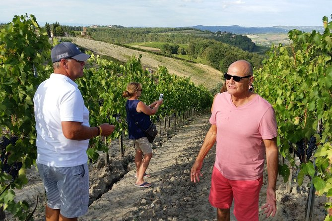 Dine in the Vineyards - Ultimate Dinner in a Tuscan Vineyard with the Wine Maker