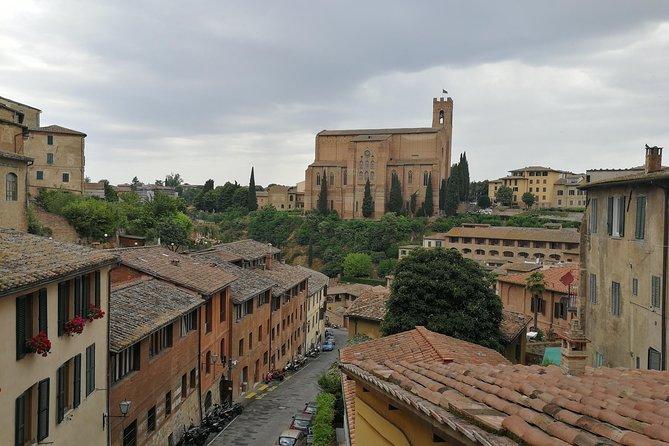 Let's discover Siena!