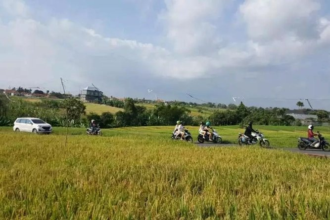 Full guided day tour of Ubud with experienced local and couchsurfer host