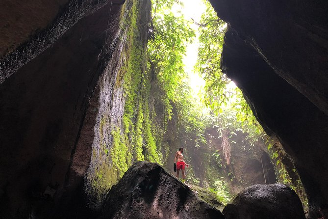 Private Ubud Tour with Hidden Waterfalls
