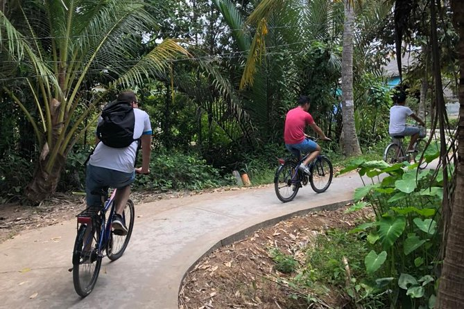 Private Non-touristy Mekong Delta with Biking 1 Day