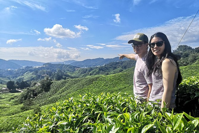 Cameron Highland Sightseeing Tour From Ipoh