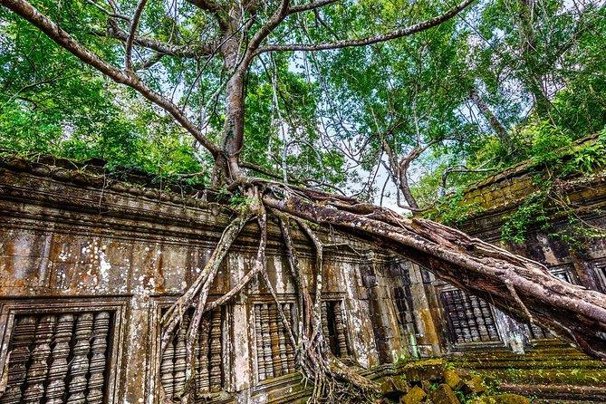 Beng Mealea, Koh Ker, and Preah Vihear temple