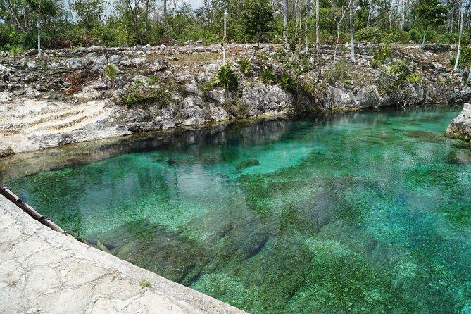 Coba Mayan Ruins and Cenote Cultural Full-Day Tour from Riviera Maya