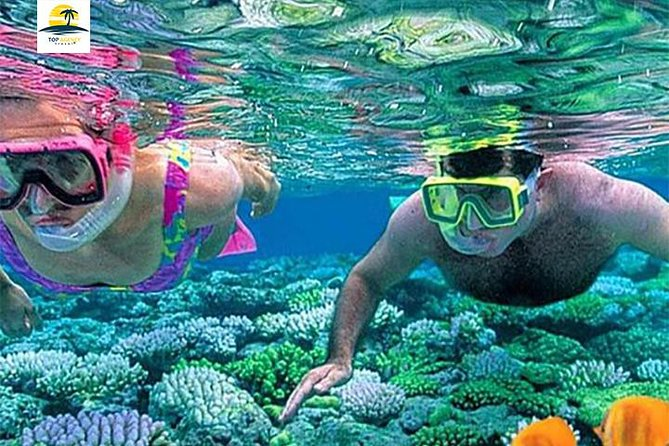 Snorkeling Tour At Port Ghalib from Marsa Alam photo 1