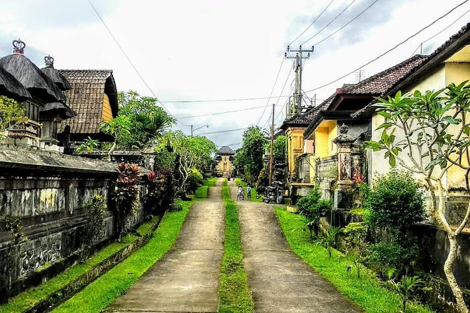 Bali Traditional Village Experience