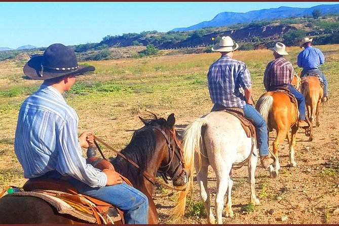 - Flagstaff, AZ, ESTADOS UNIDOS