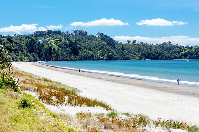 Waiheke Daily Boutique Wine Tour