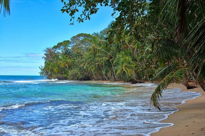 Private transfer from San Jose to Puerto Viejo