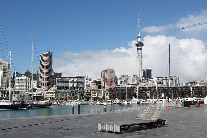 Tour a piedi nel centro di Auckland e sul lungomare