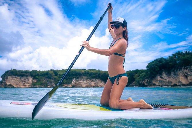 Paddle Board or Kayak Tour from San Juan