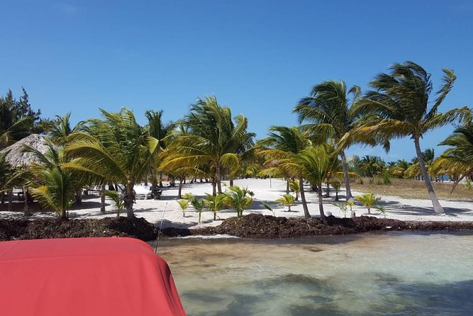 All Day Reef fishing tour with lunch from Belize City