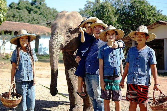 Chiang Mai Elephant Sanctuary Small Group Ethical Tour photo 2