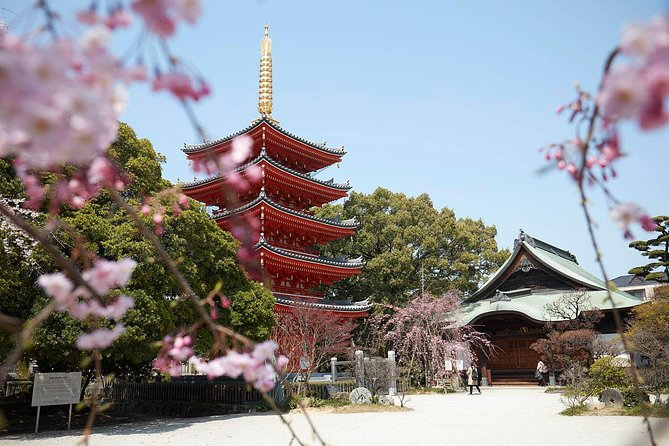 Mysterious Temples of Hakata Walking Tour