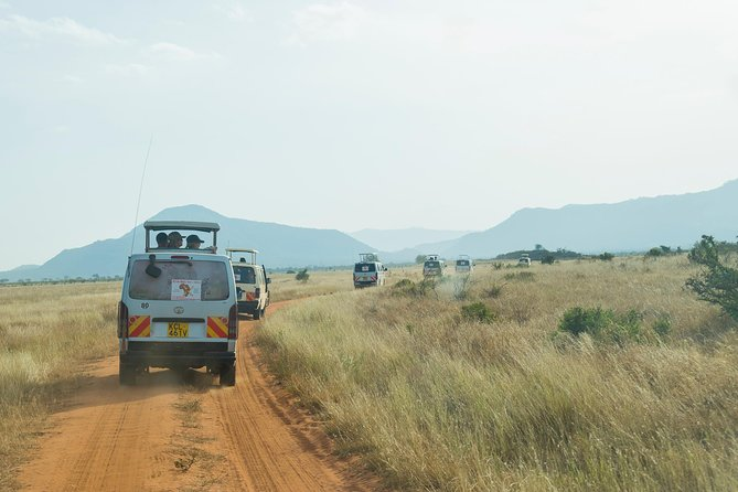 4 Days Mombasa Safari – Tsavo West, Amboseli & Tsavo East National Parks photo 2