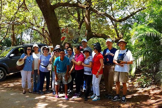 Mayan Eden Eco Wildlife Park, City Tour & Private Transfer