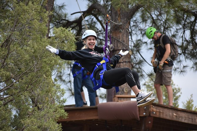 6-Zipline Adventure in the San Juan Mountains near Durango photo 1