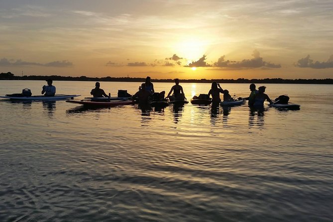 Sunset SUP or Kayak in Orlando photo 3
