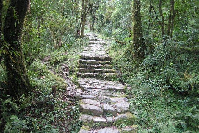2 Days Panchase Hill Trekking