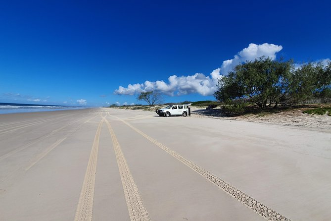 Bribie Island Beach & Bunker Tour photo 3