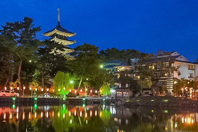 Private Tour - A Tour for Tower Lovers to Visit Famous Towers in Nara!