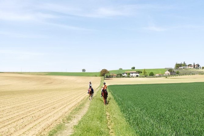 Amazing horseback riding in Umbria - Secret places with local expert!