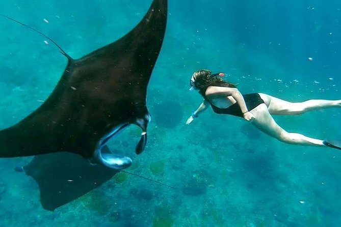 Nusa Penida Island COMBO Tour (Manta Point Snorkeling and Island Tour) photo 1