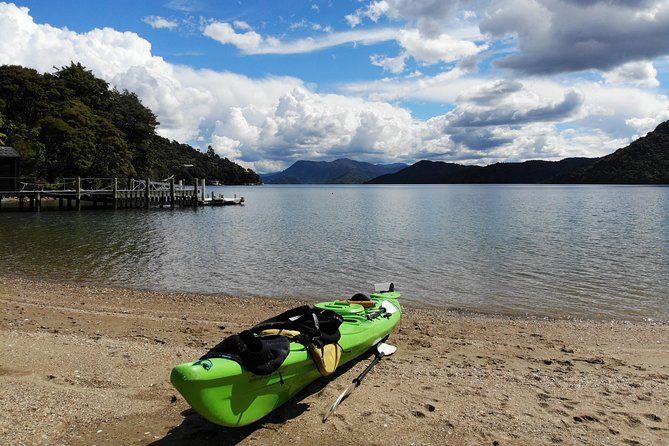 Full day Guided Sea Kayak Tour from Picton