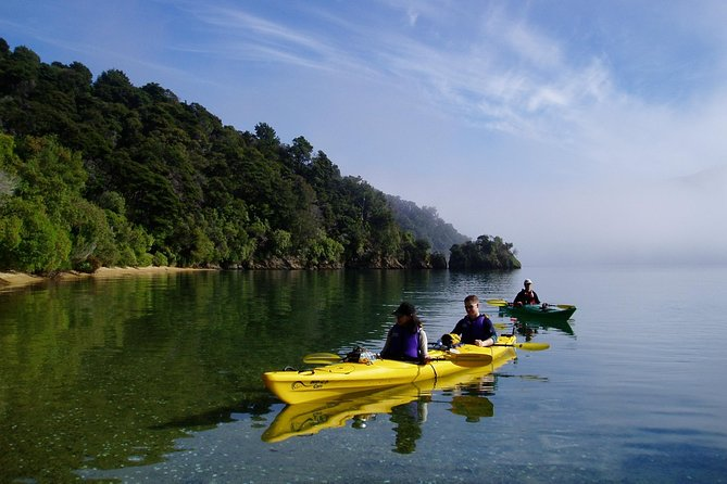 Half day Sea Kayak Guided Tour from Picton