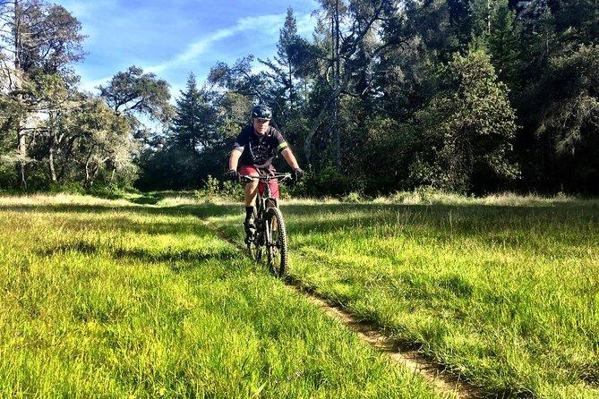 Santa Cruz Mountain Bike Tour
