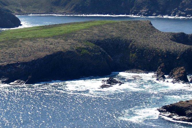 Hobart Landausflug: Bruny Island Tagesausflug