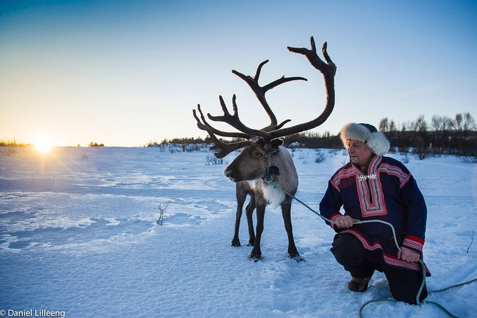 Tromso Rendier Rodelen Kleine groep ervaring met lunch