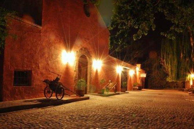 Excursão em Mendoza para Degustação de Vinho e Azeite com Jantar