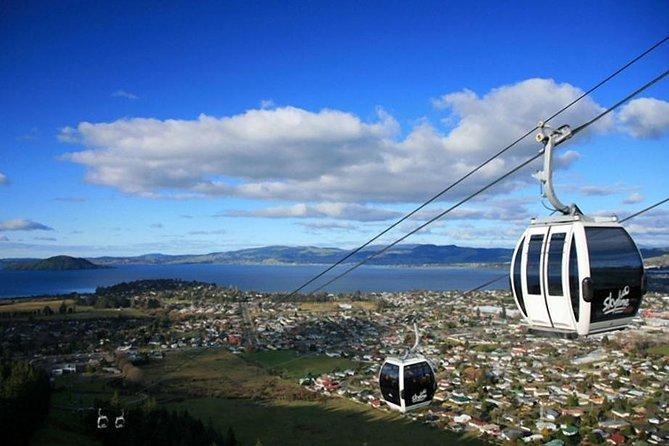 Excursión en tierra: Skyline Rotorua desde Tauranga