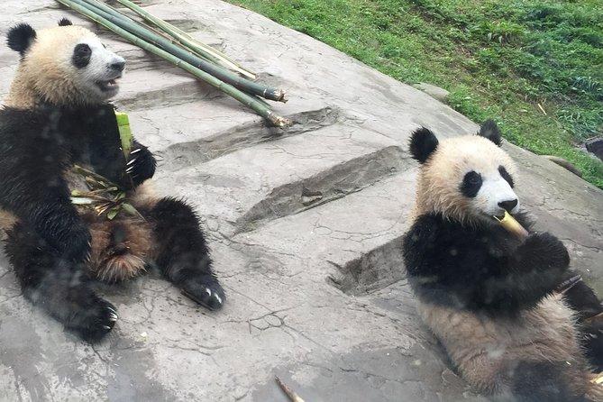 Tour del tempio di Kung Fu Panda