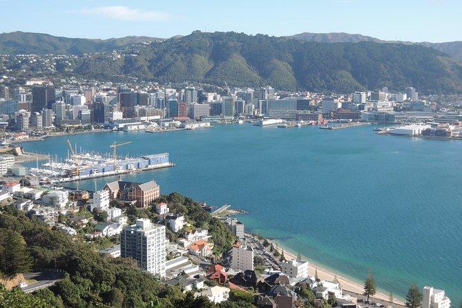 Excursión privada a la ciudad de Wellington