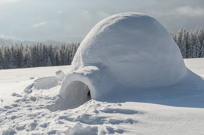 Northern Lights Trip with an Overnight Stay in a Snow Igloo