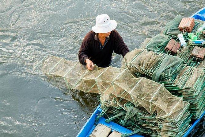 Excursão de agricultura e pesca de dia inteiro da cidade de Hoi An