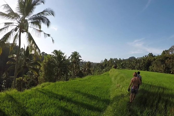 Premium Sunrises, Rice Fields, and Waterfalls Tour photo 7