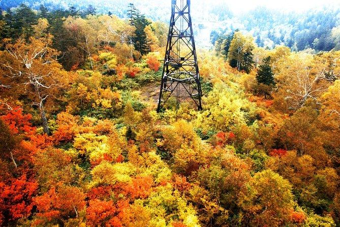 Autumn Hokkaido! Kurodake Ropeway and Sounkyo Gorge