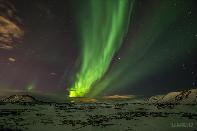 Northern Lights Tour by Bus