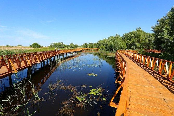 Stunning Kopacki Rit Nature Park Full-day Private Tour from Zagreb